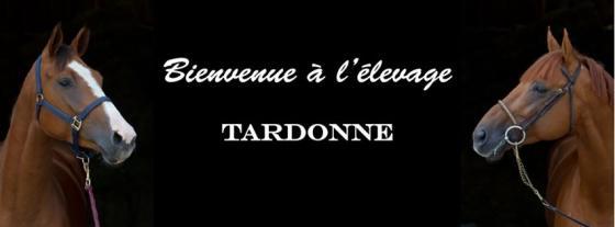 Elevage de Tardonne