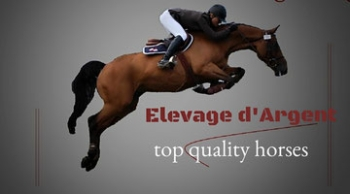 Elevage d'Argent