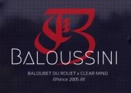 Baloussini stallion official website